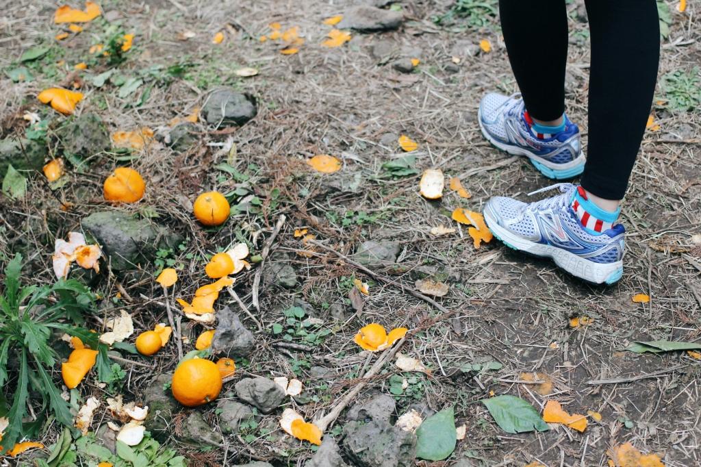 walks and wonder-analogue tangerine field jeju-006